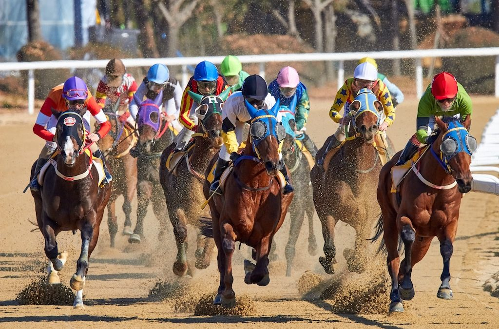 Why Mobile Betting Apps for Horse Racing are Becoming so Popular