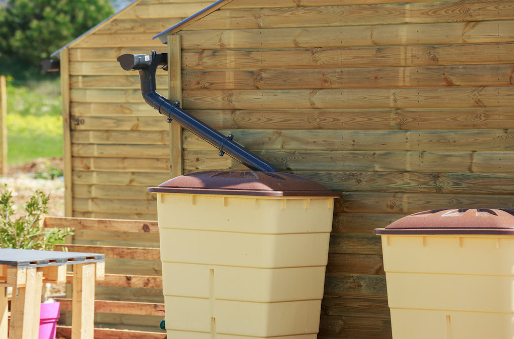 Everything You Need to Know About Building a Complete Rainwater-Harvesting System