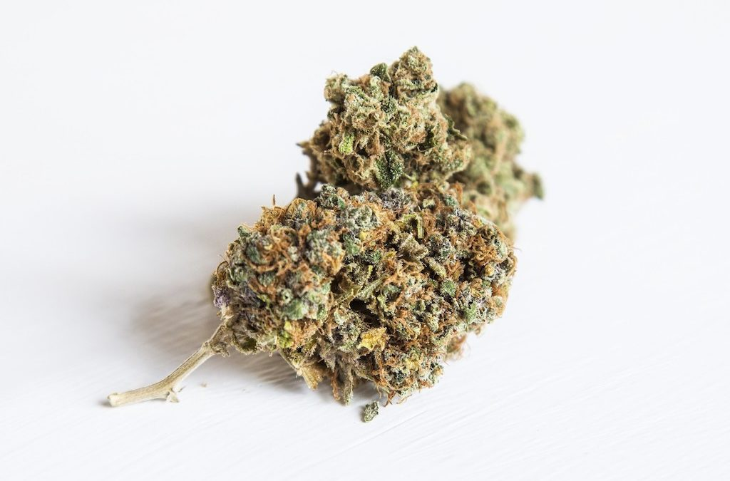 9 Health-Boosting Benefits of Regularly Smoking Good Cannabis