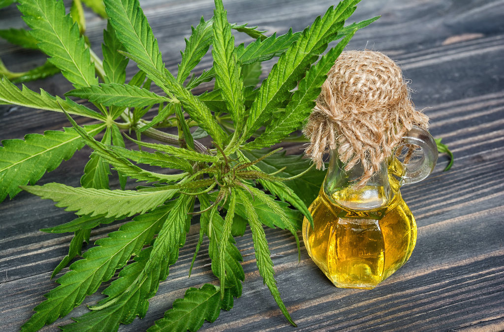 The Hard Facts on Cannabis for Cancer