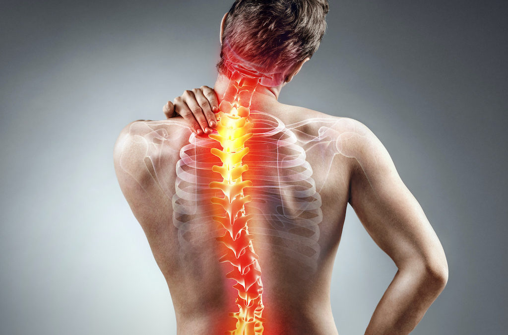 A Detailed Look Into the Most Common Spinal Conditions