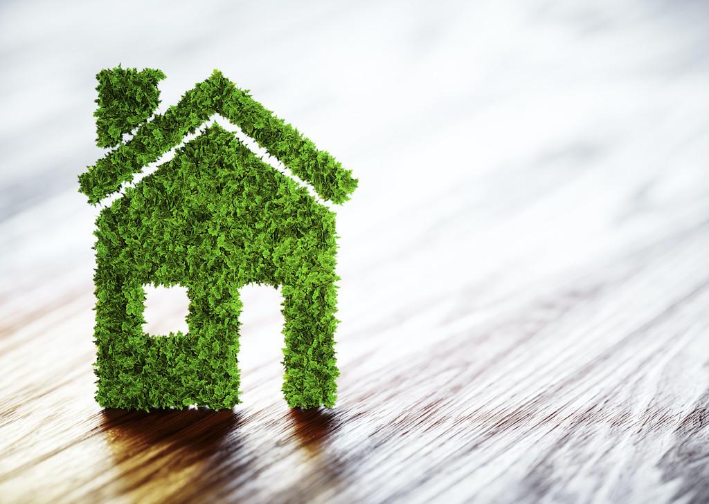 Ecology home concept.