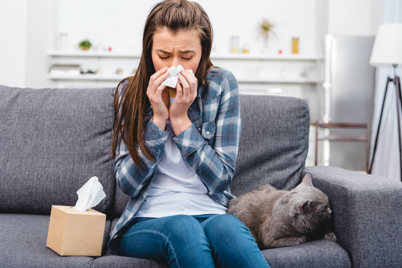 What Are the Main Sources of Indoor Air Pollution?