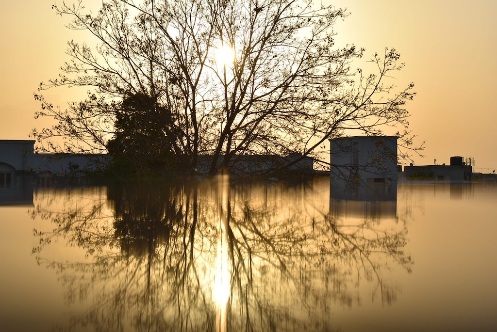 Is Flood Insurance Worth It? Signs You Need Flood Insurance