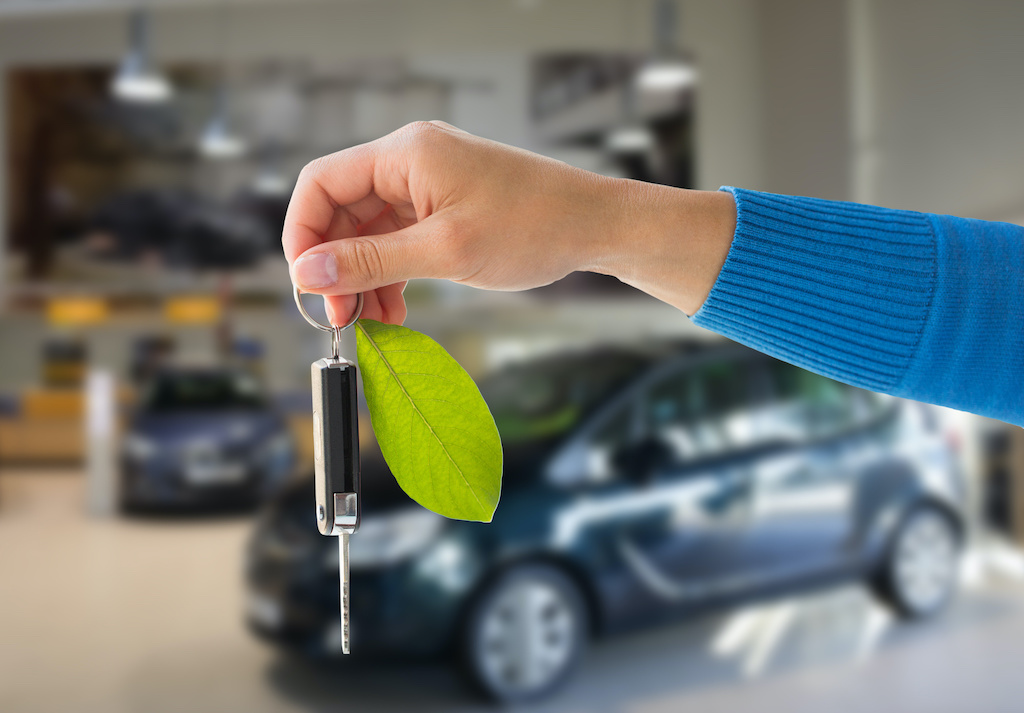 close up of hand holding car key with green leaf